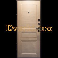 Металлическая  дверь МЕГА 100
