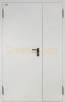 Дверь стальная техническая ДТ2